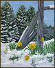 "<i> CHILLED DAFFODILS</i> You may contact the artist at  <a href=""mailto:davislab@trinex.net""> Davis Ranch</a>"