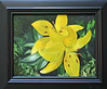 "<i><b>FLOWER</b></i> You may contact the artist at  <a href=""mailto:davislab@trinex.net""> Davis Ranch</a>"