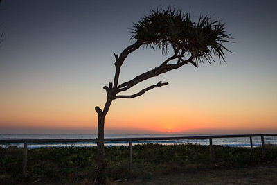 Dawn, Sunrise, Currumbin Beach