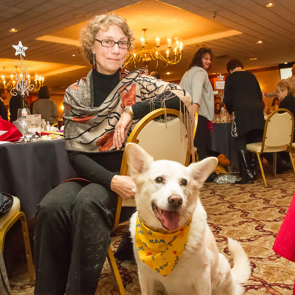 Pet Afflaire, an annual fundraiser for the Humane Society