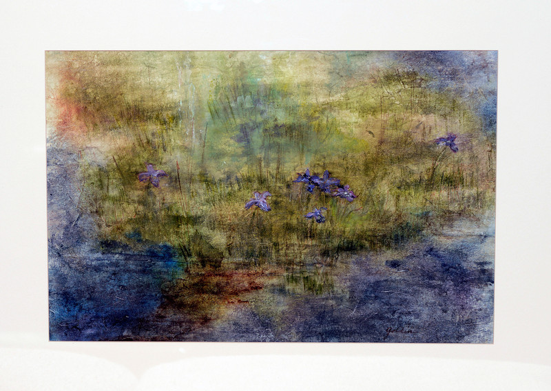 Swamp Irises