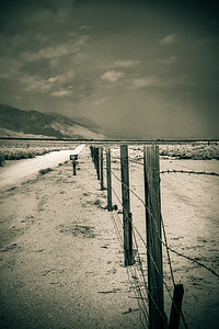 Barbed Wire Fence, Manzanar