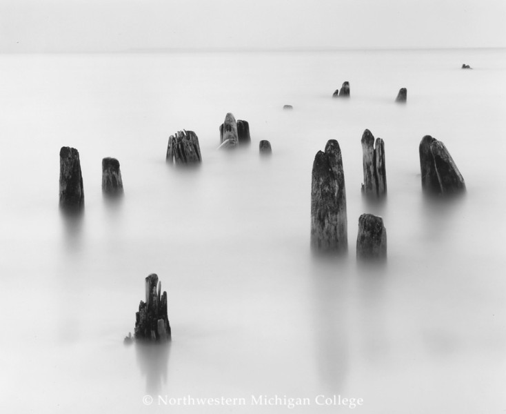 Seman, Gregory D. <br /> Dock Pilings, Good Harbor, Michigan     2004<br /> Gelatin silver print	4/35<br /> Gift of the artist<br /> 2004.011.003