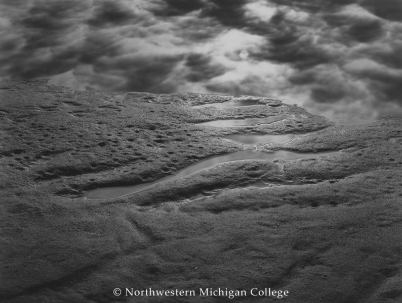 Seman, Gregory D. <br /> Spring Shoreline, East Grand Traverse Bay, Michigan     2003<br /> Selenium toned gelatin silver print    2/35<br /> Gift of the artist<br /> 2004.011.002