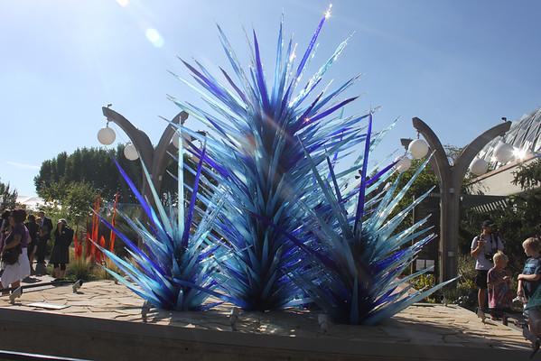 Denver Botanic Gardens Chihuly Exhibit 2014