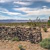 062 Mojave Desert