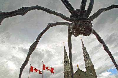 The Spider Takes Ottawa