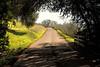 Henry Road Napa Valley