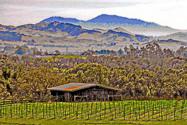 Valley View, Napa CA