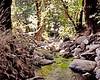 Maya Creek