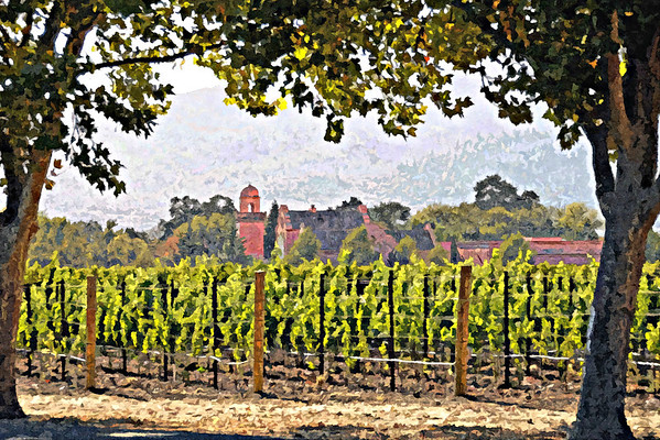 Winery Country