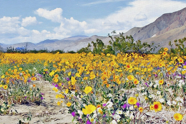 Canvaspainteddesertflowers
