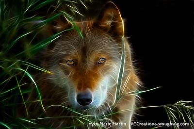 Wolf art 3