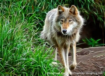 Wolf art 2