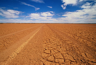 desert-field