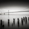 The San Francisco-Oakland Bay Bridge. A long exporure taken at dusk using the Lee Big Stopper ND filter. Converted to Black and White using the doomed Silver Efex Pro 2 software.