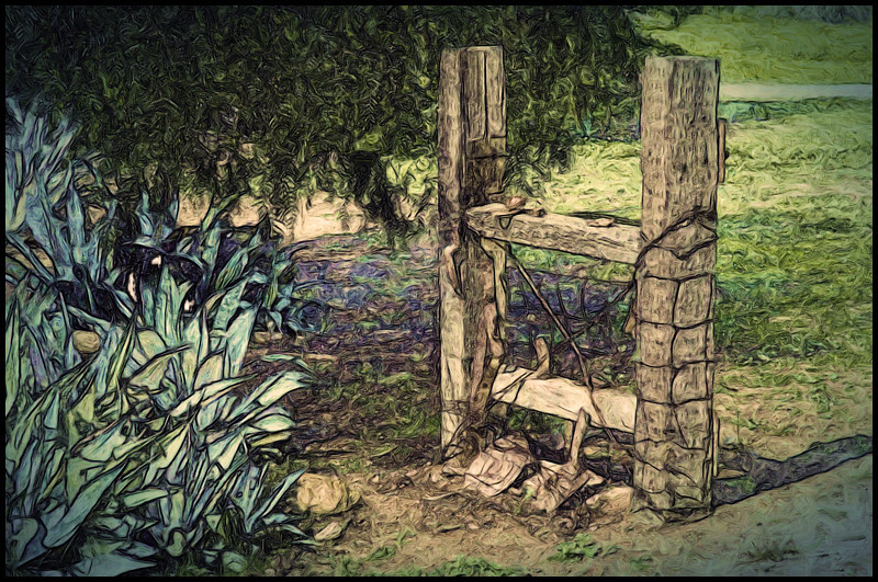 Shot at Leo Carrilo's ranch, Carlsbad, Ca. Basic processing was pencil drawing and oil painted plus a few other touches.