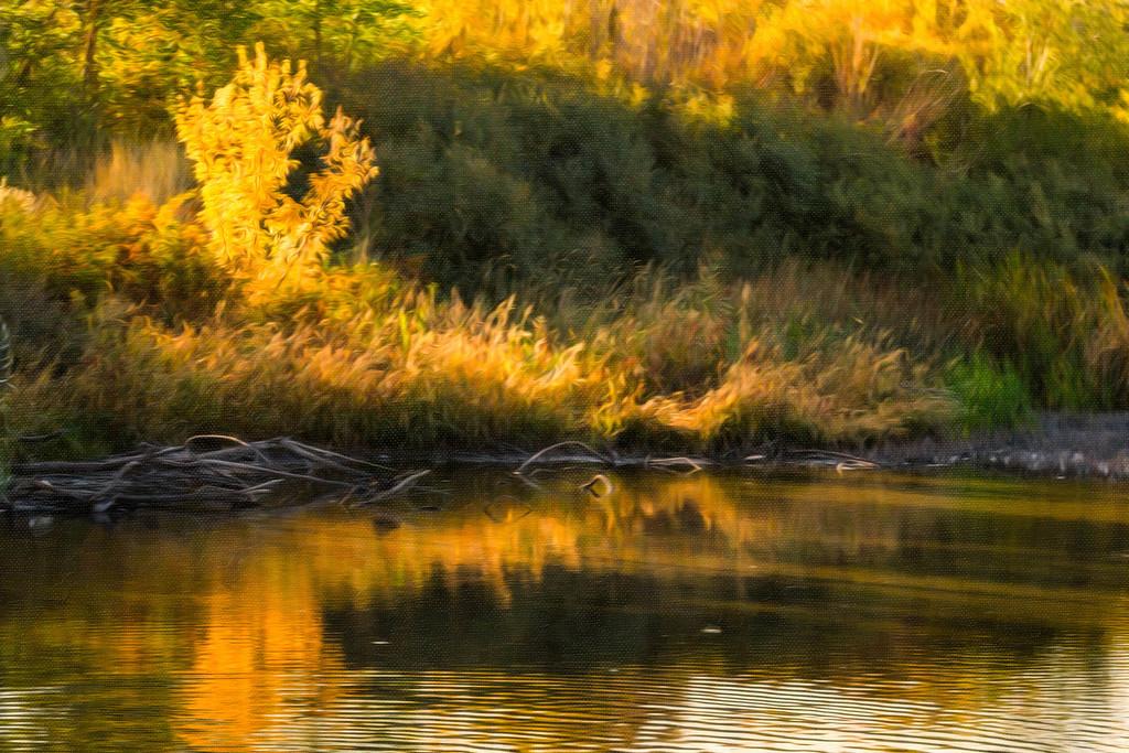 jordan river pond