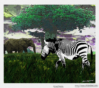 Collage of the Okavango Delta.