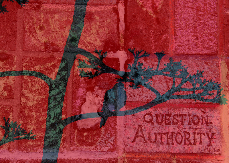 Question Authority - quoth the raven - Bricks at the Kelly Thomas memorial  -  Police Murder Fullerton Ca.