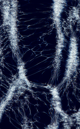 """Particles and Waves"" Image # CG08"