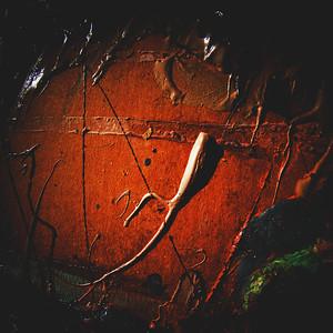 """""""Disturbance No.01"""" Image # CE29"""