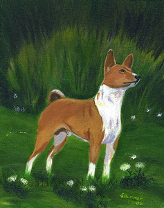 """Portrait of A Basenji""  © 2006    By Sharon Nummer Acrylic on Canvas  Original painting sold."