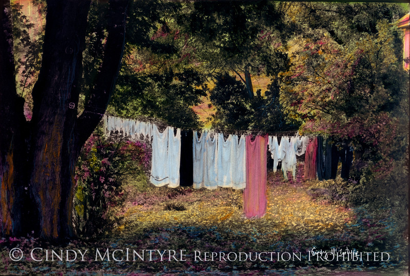 Wash Day - Maine laundry line