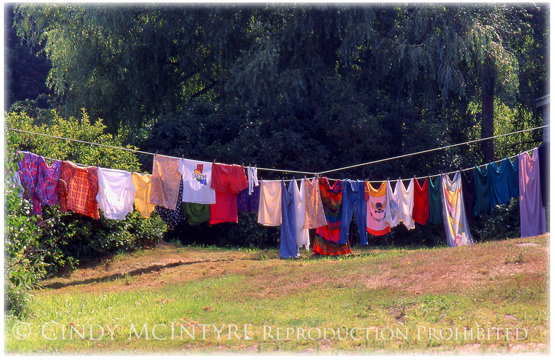 Twin Laundry Lines