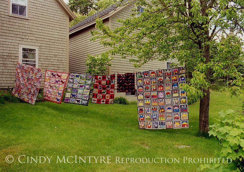 Eloise's Quilts copy
