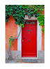 Red door with vine in Italy.