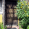 Saxon Cottage, Steyning 2009