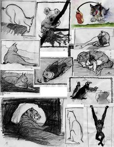 Animal Drawings, sketch book, ink, watercolor, pencil