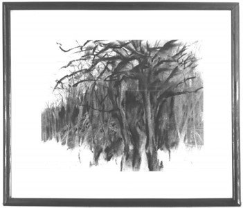 "©John Rachell  Title: Forest Preserve Image Size: 8""w X 10""d Dated 1976 Medium & Support: Charcoal on paper Signed: LL Signature Exhibitions: 1976 Student/Faculty Exhibition, Downtown Hotel, Chicago, Il."