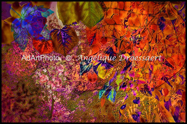 Visit to Botanic Gardens: Juniper Level<br /> duke gardens spr2011 16 - version 3