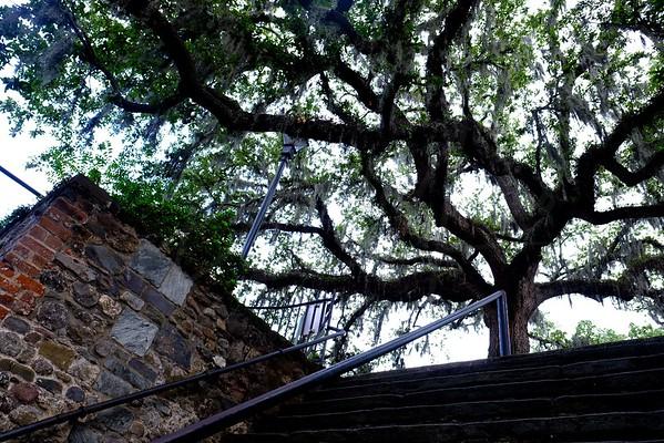 Historic Steps of Savannaah