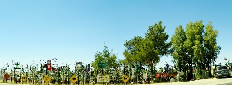 Bottle Tree Ranch - 1