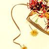 Dry flowers, etude
