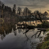 Sunken Trees - At the River Regen
