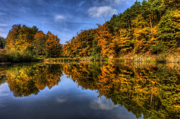 Yellow Green and Blue - Autumn Reflections 1