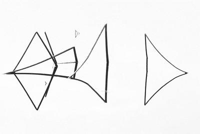Cat fish tails #11 8918