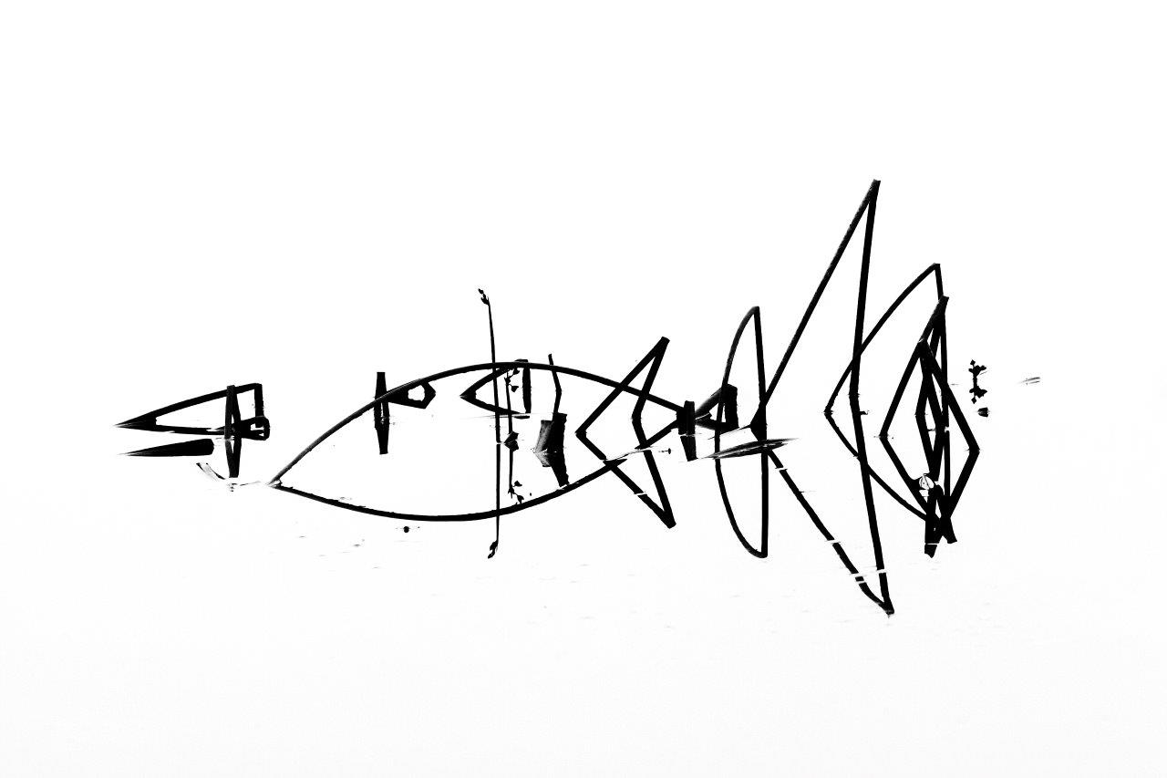 Cat fish tails #8 9162 b&w N