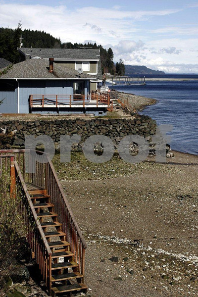 Houses built on the shores of Hood Canal in WA state, all on septic tanks that contribute to depleted oxygen levels that are harmful to salmon.