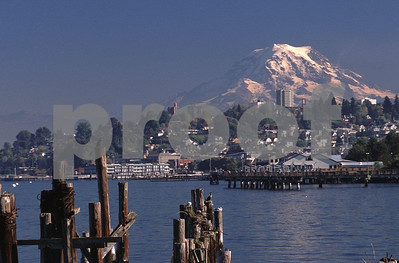 Creosote laiden pilings in Commencement Bay with Tacoma, WA and Mt. Rainier in the background.