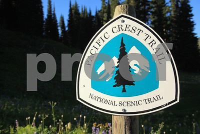 America's natural beauty is readily available to those willing to hike the Pacific Crest Trail in Washington State.