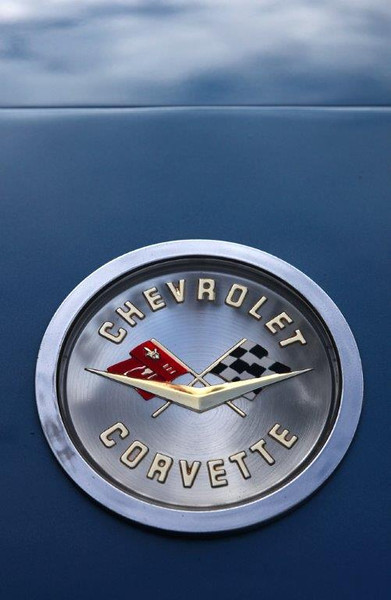America's first real sports car was the Corvette and this 1959 model still sports the treasured hood emblem. WA