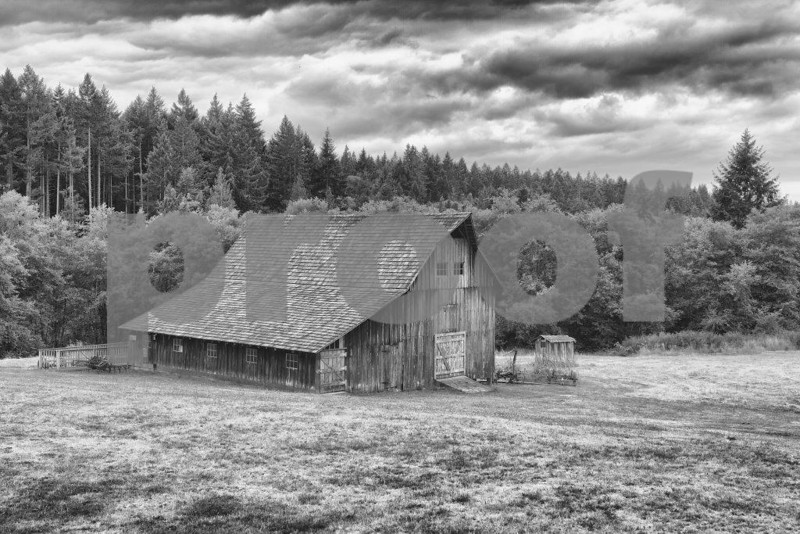 A historic barn on Anderson Island, WA.