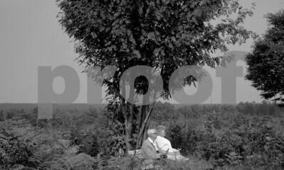Couple under tree 1970 #5+