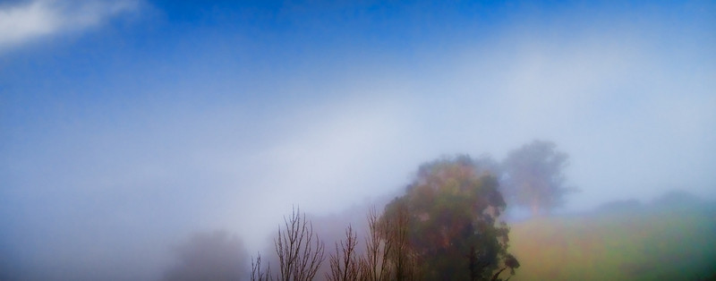 Rising mist in the morning<br /> 11 x 28 Giclée Canvas (Stretched)