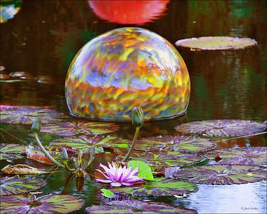 Niijima Float